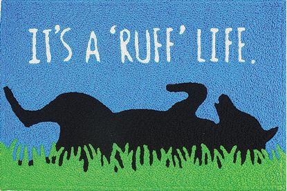 Picture of Ruff Life
