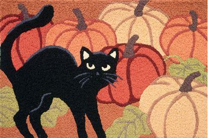 Picture of Black Cat